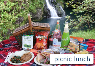 Hana Picnic Lunch