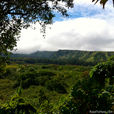 Wailua Valley Side View