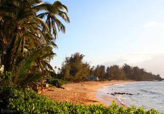 5ab56174d7 Road to Hana Sights | Must-see spots to stop
